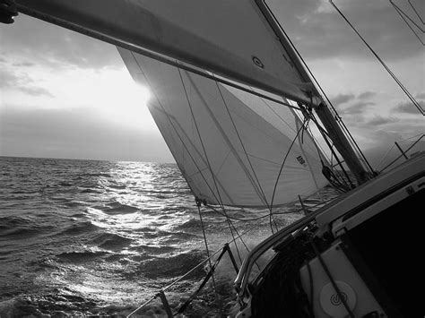 Sailboat Black And White by Black And White Sailboat Prints Www Imgkid The