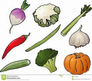 Vegetables Illustration Stock Vector Illustration Of