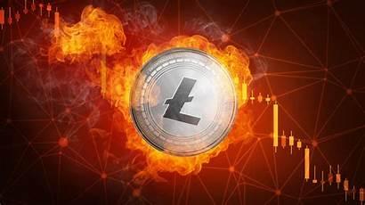 Litecoin Halving Crypto Coin Fire Flame Bitcoin