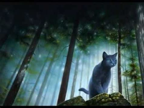 Warrior Cats New Prophecy Movie Youtube
