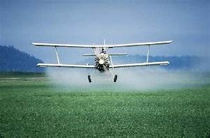 Common pesticides are found in majority of human umbilical ...