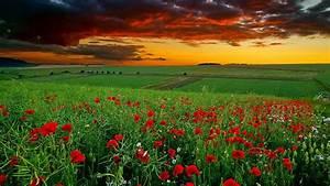 Image for full hd nature wallpapers 1080p desktop ...