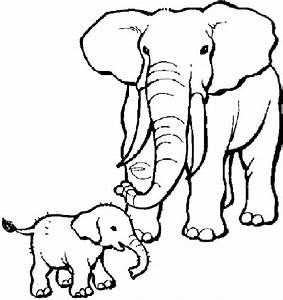 Elephant Coloring Pages To Print Coloring Home