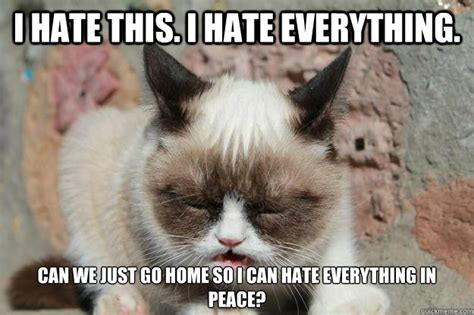 Hate Meme - i hate this i hate everything can we just go home so i can hate everything in peace grumpy