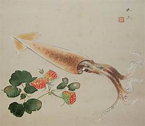 SS-50147 [ Squid ] Japanese Vintage Wall Scroll Drawing ...