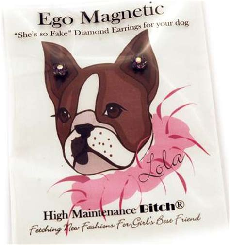 diamond earrings  dogs ego magnetic studs
