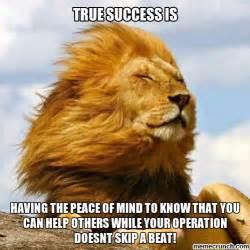 Lions Memes - lion meme 28 images lion memes 85 best images about lion memes on pinterest lion meme