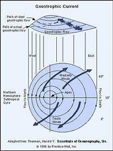 General Ocean Circulation 2
