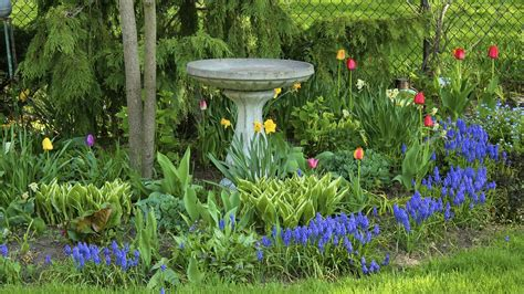 gardening tips how to plan your garden new house