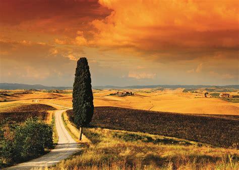 puzzle sunset  tuscany jumbo   pieces jigsaw