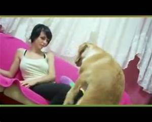 human women mating with dogs