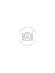 Beautiful Shade Garden Path