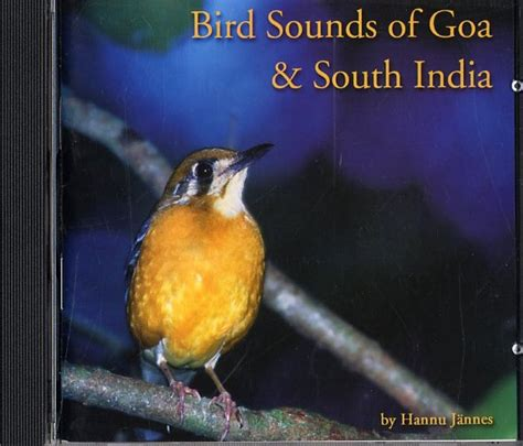 bird sounds of goa and south india hannu jannes nhbs shop