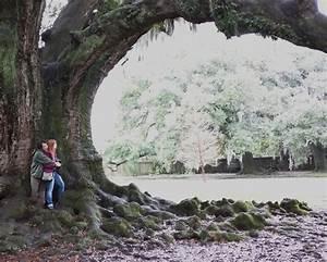 In Life : tree of life in new orleans audubon park picturesque ~ Nature-et-papiers.com Idées de Décoration