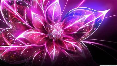 Purple Wallpapers Flower 1366 Eden Colorful Child