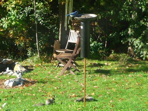 Top Three Best Squirrel Proof Bird Feeders In 2014