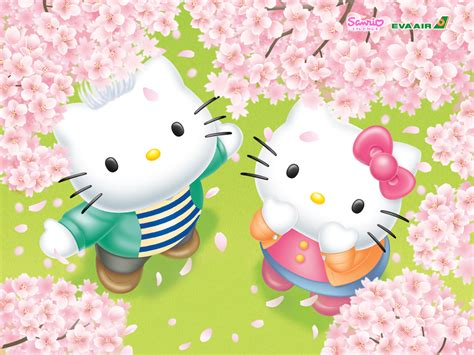 cute  kitty wallpaper desktop wallpapersafari