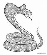 Snake Coloring Snakes Cool Printable Fangs Popular sketch template