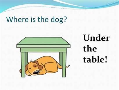 Where Prepositions Under Dog Cat