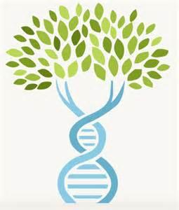 DNA Family Tree Clip Art