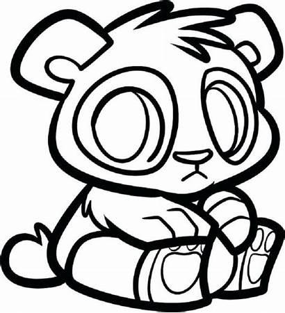 Panda Coloring Pages Cartoon Drawing Pandas Bears