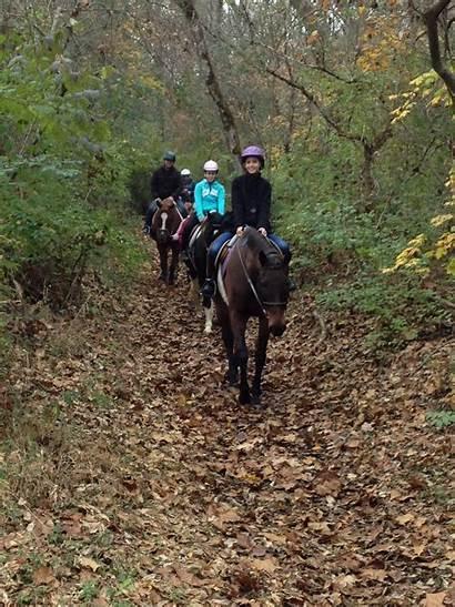 Trail Riding Rides Stables Horseback Saddle Beginner
