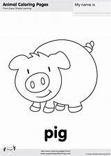 Pig Coloring Farm Animals Animal Simple Worksheets Flashcards Super Kindergarten Esl Activities Colouring Learning Preschool Sheets Prek Supersimplelearning Worksheet Pigs sketch template