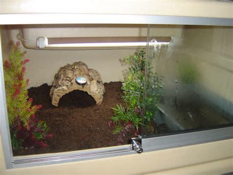 le pour terrarium tortue 28 images exemple terrarium astrochelys radiata v2 terrarium pour