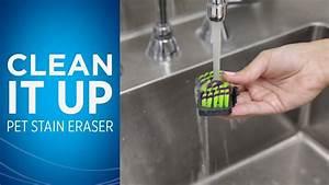 Pet Stain Eraser