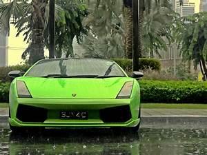 Lamborghini cars green palm trees rain wallpaper