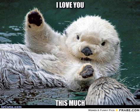 Otter Love Meme - i love you hello otter meme generator captionator