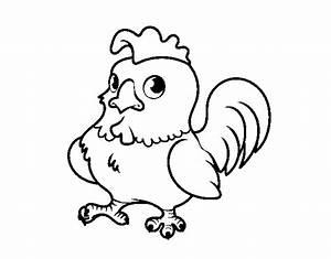 Bartolito el gallo letra