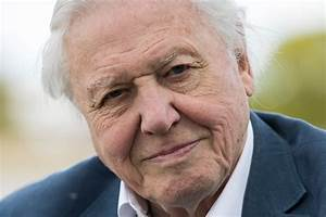 David Attenborough receives fossil named in his honour