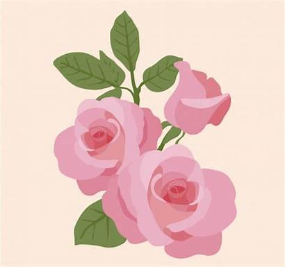Rose Pretty Vectors Svg Graphic Downloads Eps