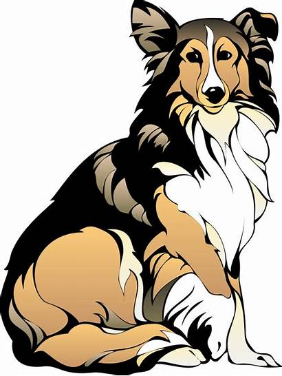 Clipart Collie Sitting