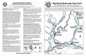 a blog of no importance: Big Basin