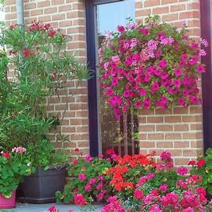 Les Plus Belles Maisons : fa ade de maison proven ale ventana blog ~ Melissatoandfro.com Idées de Décoration