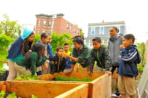 The East Boston Ymca Is Offering Cooking Classes And Urban
