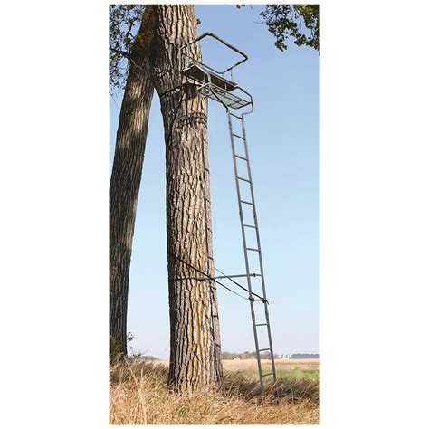 guide gear 18 deluxe 2 man ladder tree stand 658560