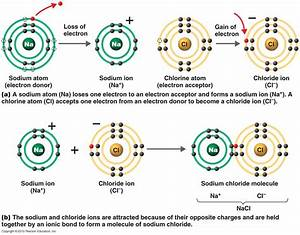 savvy-chemist: Ionic Bonding (2) Dot and cross diagrams ...