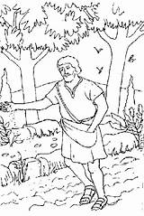 Parable Sower Coloring Pages Seed Mustard Realistic Colouring Printable Print Template Getcolorings Luna Getdrawings Searches Recent sketch template