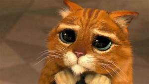Chris Pratt se disculpa antes de promocionar Jurassic World Alfa Beta Juega