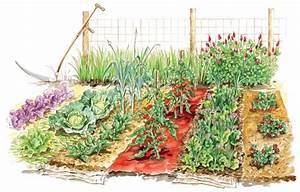 Gemüsegarten Anlegen Beispiele : gem segarten planen und anlegen was sie beachten m ssen ~ Lizthompson.info Haus und Dekorationen