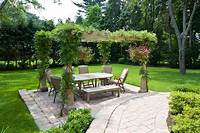 best patio plants design ideas Pergola Plants Guide: Shade and Enhance Your Outdoor Space