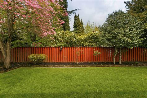 Backyard Ideas : Brilliant Backyard Tree Ideas-home Stratosphere