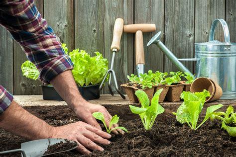 que planter a automne au potager