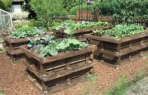 Carre De Jardin Potager : potager en carre avec des palettes en bois et potager ~ Premium-room.com Idées de Décoration