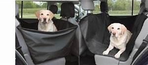 Protection Chien Voiture : siege auto chien ~ Dallasstarsshop.com Idées de Décoration