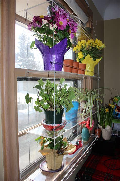 Plants On Windows by Beautiful Views Plant Shelves Minnesotafromscratch