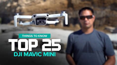 dji mavic mini top       buy
